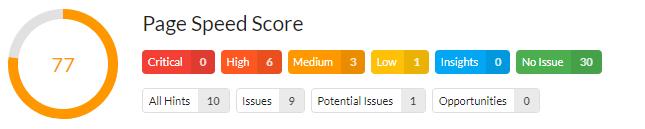 PageSpeed Score - Analyse Beispiel