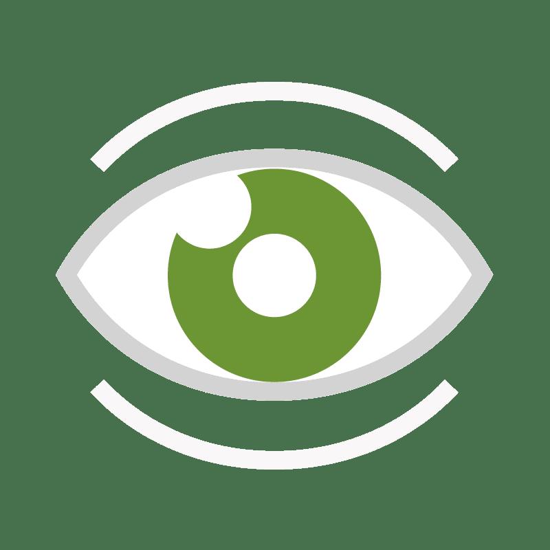SEYBOLD Strategie - Sichtbarkeit