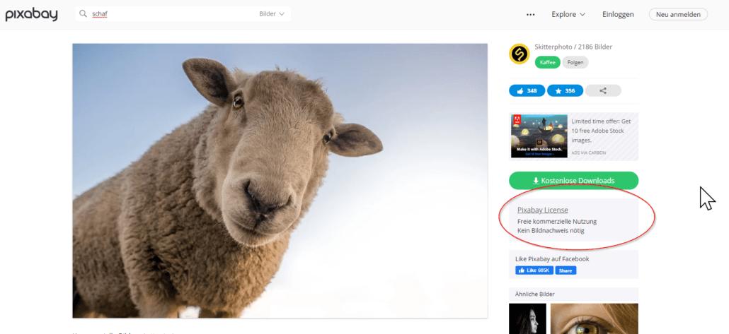 Pixabay: So sicherst du die Bildinformationen für lizenzfreie kostenlose Bilder
