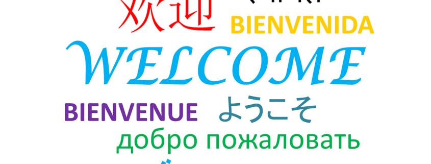 Internationales SEO - hreflang Implementierung und Erweiterung um neue Geschäftsfelder - Welcome Bievenido